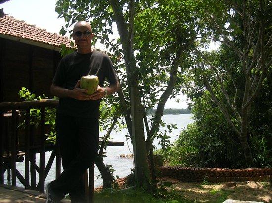 Hotel Vedas Heritage: coconut