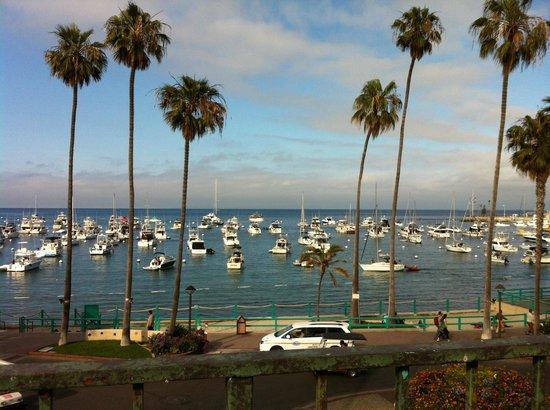 Portofino Hotel: Avalon bay