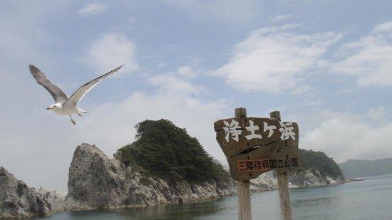 Jodogahama  Beach: 浄土ヶ浜