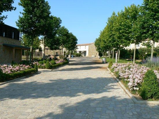 Jardins de Saint-Benoit: Allée centrale