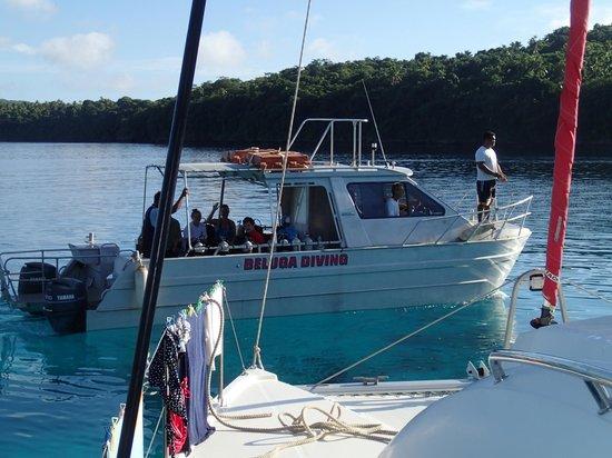 Beluga Diving Vava'u : Beluga Diving picking up divers from Sailboat in Port Maurelle, Vava'u, Tonga