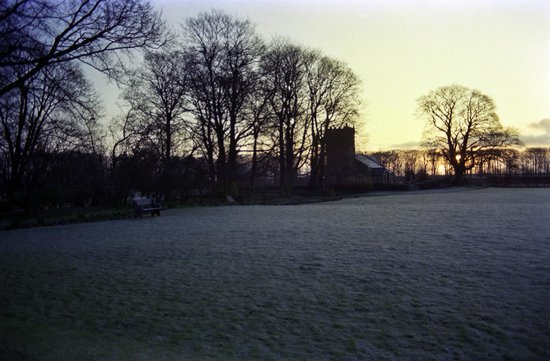 Rowley Manor Country House Hotel: Hotel grounds