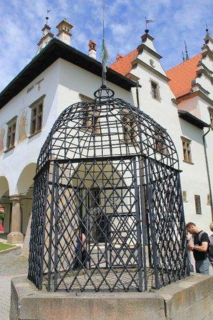 Cage of Shame