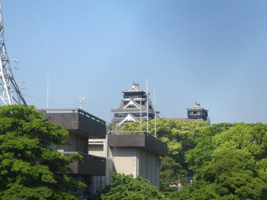 Ark Hotel Kumamotojomae : アップで