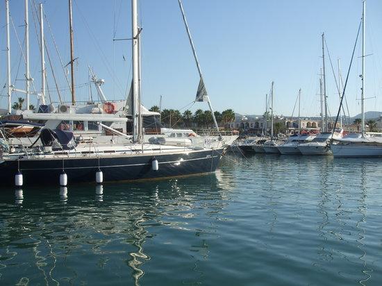 Molos Restaurant: Latchi Harbour