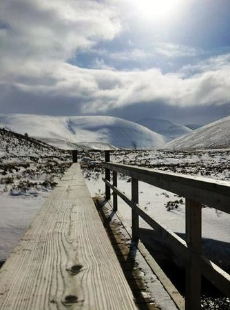 Cairngorm Lodge Youth Hostel Image