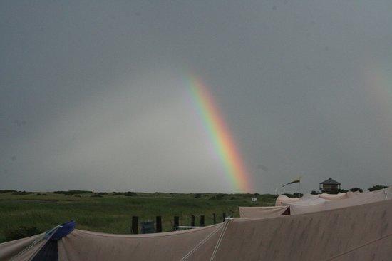 Campingplatz Palisadendiek: rainbow