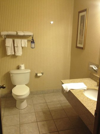 Best Western Pocatello Inn: View into Bath