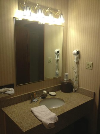 Best Western Pocatello Inn: Bath