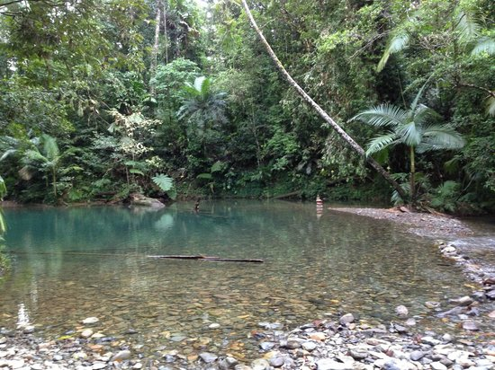 "Prema Shanti Yoga & Meditation Retreat: ""The Blue Hole"" - freshwater swimming hole 5 mins from Prema Shanti"