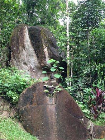 Prema Shanti Yoga & Meditation Retreat : Stunning rock formations on site