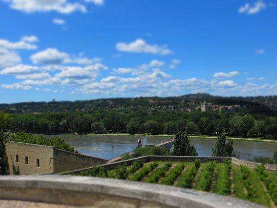 Daytour Provence : Vista dal rocher des doms