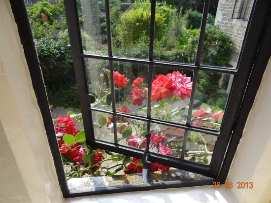 Lacock Pottery Bed & Breakfast: view over the garden