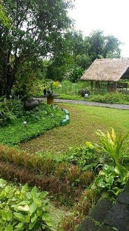 Moon Garden Tagaytay: gardens
