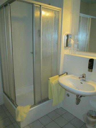 Erzgebirgshotel Freiberger Höhe: Waschbecken mit Dusche