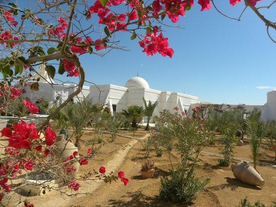Autre Tunisie Day Tours : .