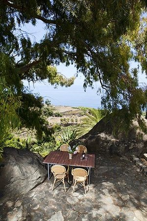 Finca el Quinto: All properties have their own private terrace
