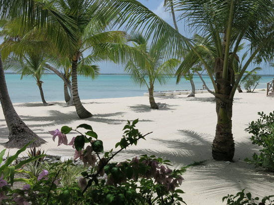 Tiamo Resort: Magic place