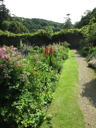 Hartland Abbey & Gardens: Walled flower garden