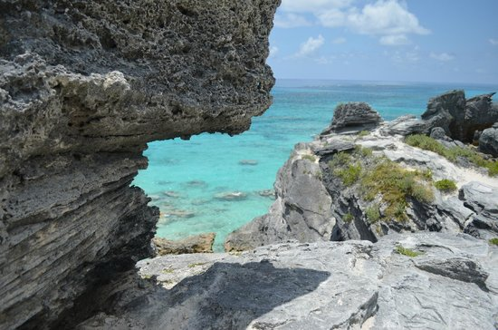 Horseshoe Bay Beach: from a cliff overlooking a snorkeling area