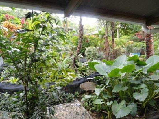 Playa Bluff Beach Restaurant: The Gardens