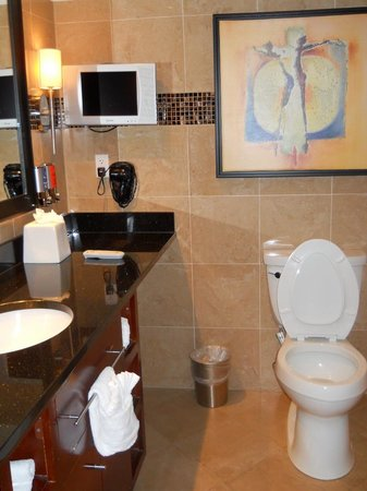 Treasure Bay Casino and Hotel : Bathroom with a TV