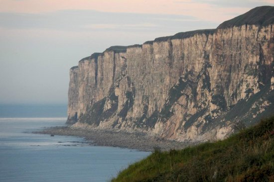 Reighton Sands Holiday Park - Haven: The view towards Bempton Cliffs