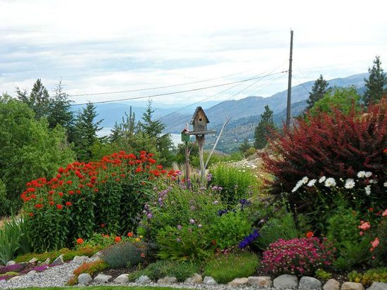 Copper Goose B & B: Beautiful spring garden