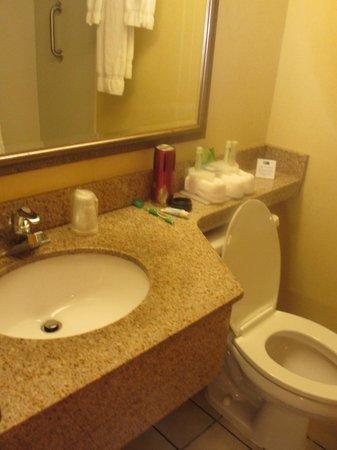 Holiday Inn Express Boston: salle de bain un peu petite