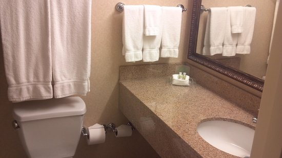 Holiday Inn & Suites: bathroom