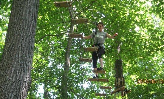 Go Ape Treetop Adventure Course: Alternating board suspended walkway