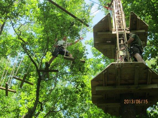 Go Ape Treetop Adventure Course: Swinging cross steps