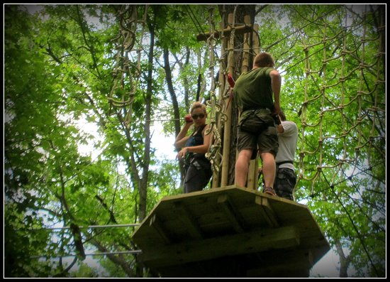 Go Ape Treetop Adventure Course: One of many platforms connecting obstacles