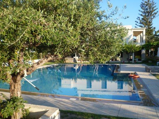 Hotel Mantenia : piscine