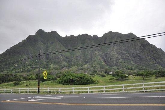 Kualoa Regional Park: Mountains View