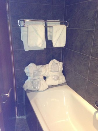 Newpark Hotel: Our bathroom