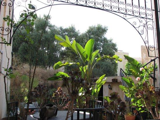 NAJMAT SOUAFINE : terrasse
