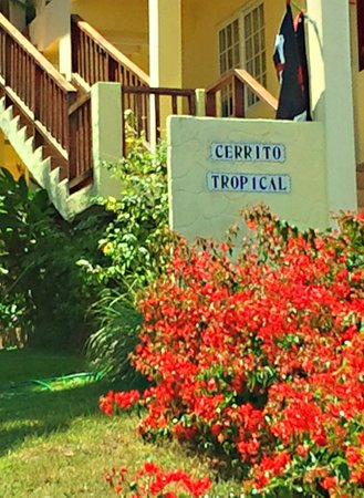 B&B Hotel Cerrito: Cerrito Tropical