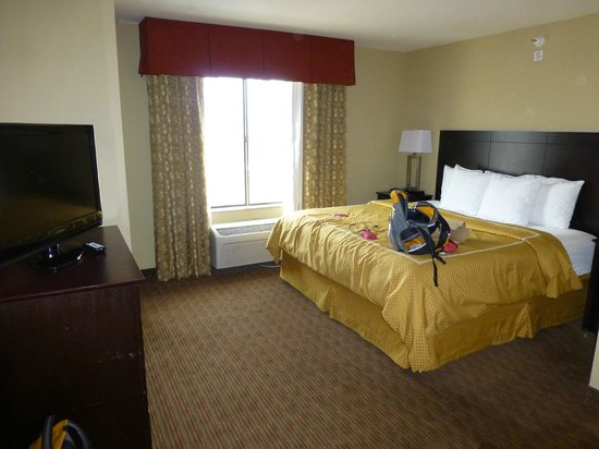 Comfort Suites Gallup: King bed