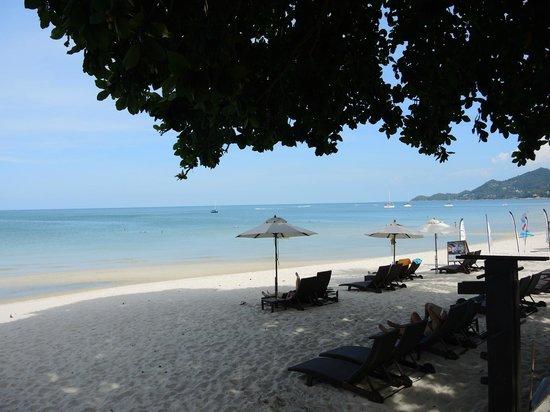 Buri Rasa Village Samui: Пляж
