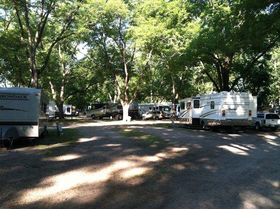 Park Ridge RV Campground: beautiful