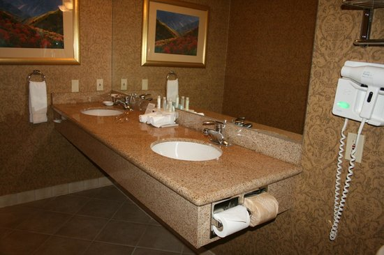 Holiday Inn Express South Lake Tahoe : Sink area
