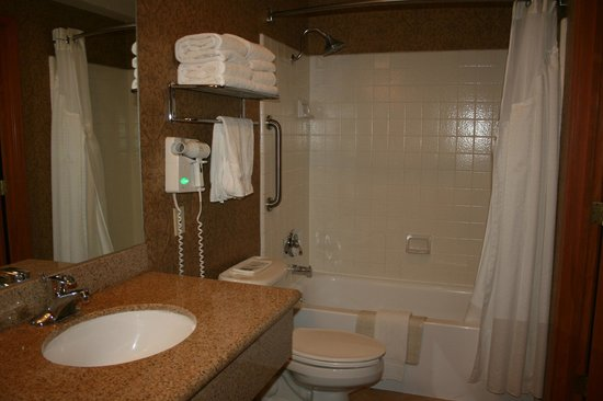 Holiday Inn Express South Lake Tahoe : Shower area