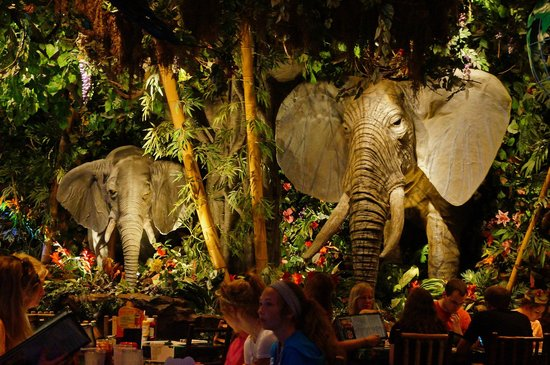 Rainforest Cafe Menu Auburn Hills Mi