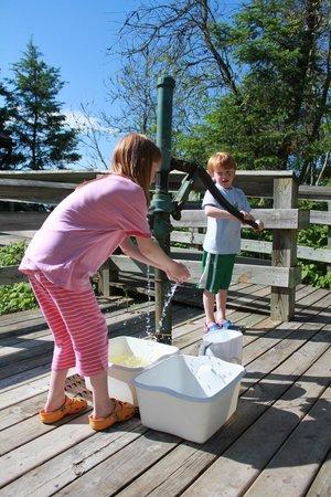 Wilderness State Park: Water pump