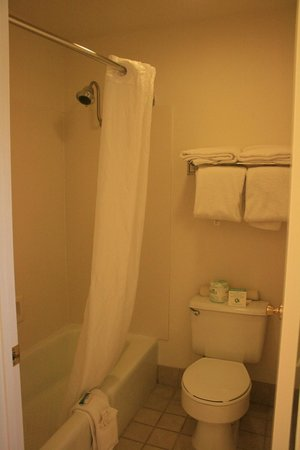 BEST WESTERN Trailside Inn: Toilet & Shower