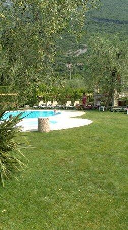Hotel Benacus Malcesine: Pool
