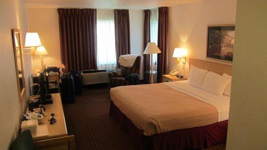 Comfort Inn & Suites Carbondale: Unser Zimmer
