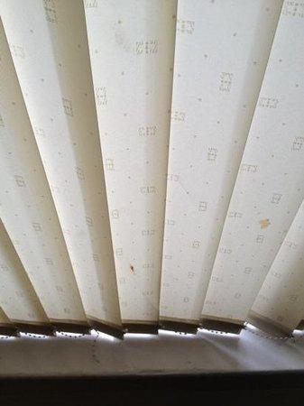 Barringtons Hotel : dirty blinds