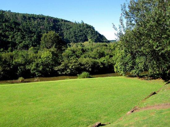 Lone Creek River Lodge : Blick auf Park mit Flüsschen